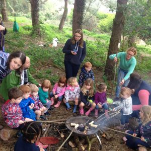 CHILDRENS BIRTHDAY PARTIES – KIDS PARTY IDEAS – FOREST SCHOOL PARTY GLOUCESTER, CHELTENHAM, TEWKESBURY, STROUD, CIRENCESTER, GLOUCESTERSHIRE.